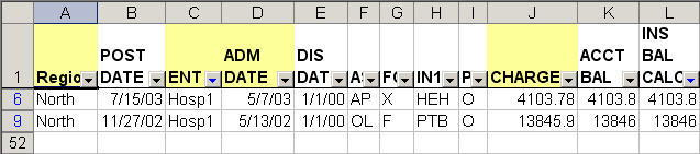 filtered data using custom autofilters in Excel
