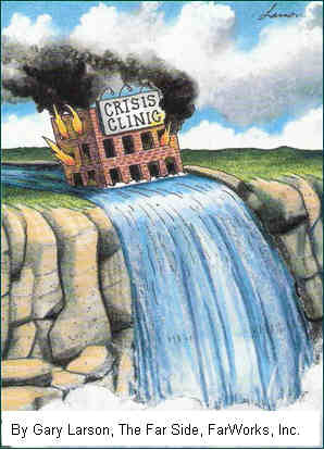 Gary Larson's crisis clinic and fmea